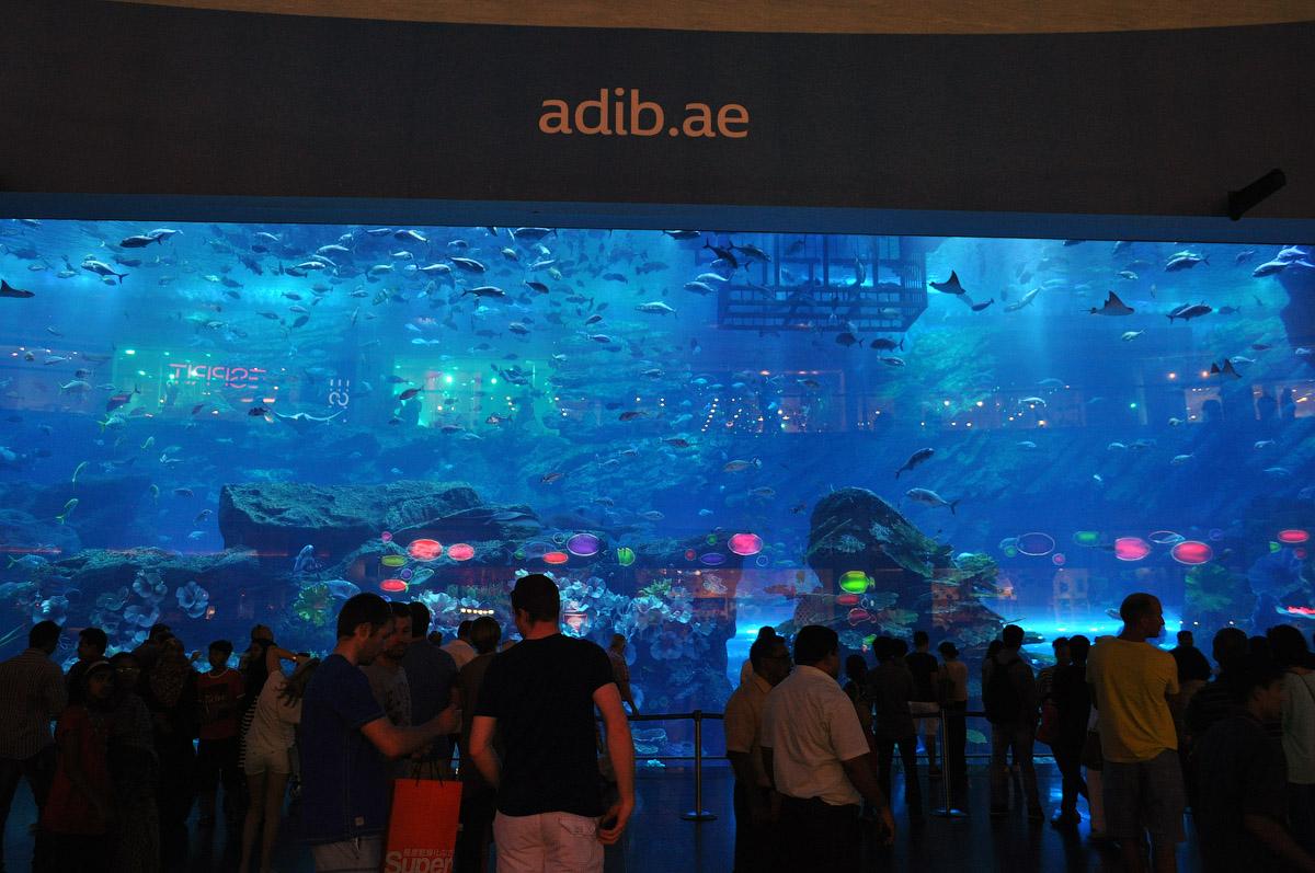DSC_7750.jpg как я гулял по Дубаю